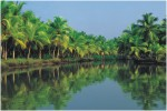 Kerala Back Waters, Kumarakom, Alleppey, South India Tour, India Holiday Options