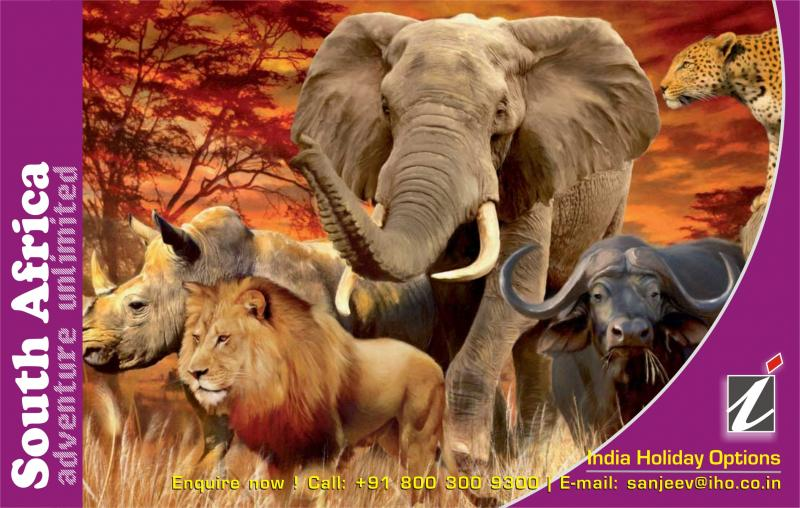 South Africa Tour Package, Kruger National Park Safari, Sun City, Johannesburg